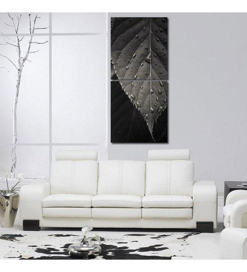 Buy 999 Store Monotone Leaf Closeup Modern Wall Art Painting -2 ...