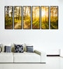 Fibre 70 x 0.8 x 30 Inch Sunny Forest Trees Framed Art Panels - Set of 6 by 999Store