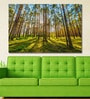 Vinyl 72 x 0.4 x 48 Inch Sun Rays Make Their Way Through The Trunks of Trees in A Pine Forest Painting Unframed Digital Art Print by 999Store