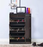 Abacus Shoe Cabinet in Walnut Finish