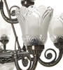 15 Lights Chandelier by Aesthetic Home Solutions