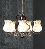 Multicolour Glass Chandelier by Aesthetics Home Solution