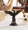 Multicolour Brass Open Wings Eagle Showpiece by Handecor