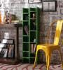 Regulo Contemporary Wall Shelf in Green by Appu Art