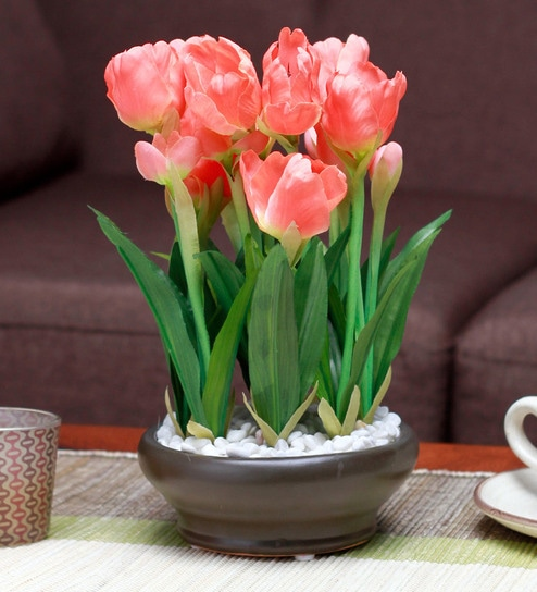 Tulip Plant With Ceramic Vase