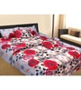 Azaani Multicolor Cotton Floral Double Bed Sheet (with Pillow Covers)