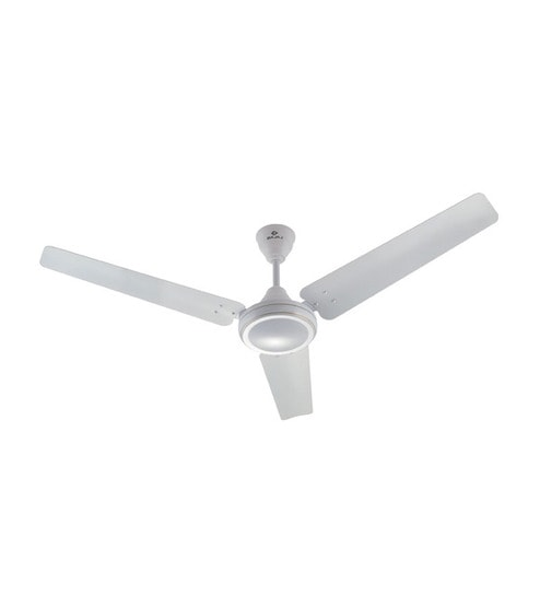Buy bajaj speedster white ceiling fan 4724 in online ceiling bajaj speedster white ceiling fan 4724 in aloadofball Choice Image