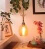 Transparent Glass Champagne Filament Pendant Lamp by Bandra Flea Market