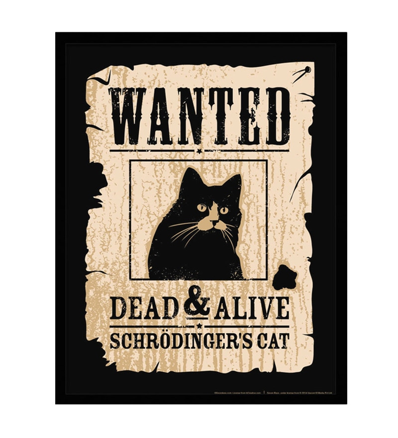 Paper & Fibre 13 x 1 x 17 Inch Schrodinger's Cat Officially Licensed Framed Poster by bCreative