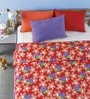 Bliss Floral Bee Print Multicolour Microfibre Abstract Double Dohar