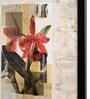 Bloomfields Premium Digital Paper 20 x 26 Inch Flower by John Butler Framed Digital Art Print