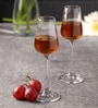 Bohemia Crystal Sandra Glass 65 ML Wine Glass - Set of 6