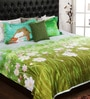 Aqua Cotton King Size Bedsheet - Set of 3 by Bombay Dyeing