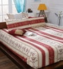 Maroon 65%Poly 35%Cotton Queen Size Bedsheet - Set of 3 by Bombay Dyeing