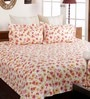 Peach Cotton Queen Size Bedsheet - Set of 3 by Bombay Dyeing