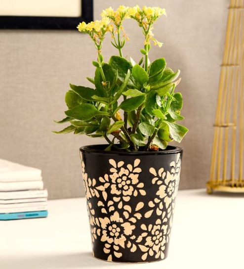9aaf402c4c1 Buy Brown Ceramic Bucket Planter by Unravel India Online - Pots - Pots    Planters - Decor - Pepperfry Product