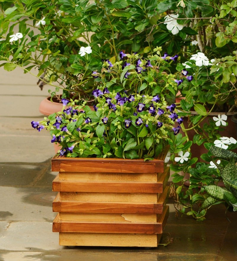 Brown Layered Handmade Box Wooden Planter by Point of Hue