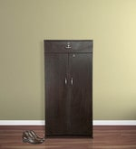 Camel Shoe Cabinet in Brown Colour