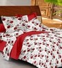 Casa Basic Red & White Nature & Florals Cotton Queen Size Bed Sheets - Set of 3