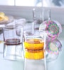 Cerve Arena Glasses (Set of 6) by Koffeetable