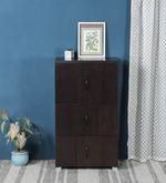 Chikako Storage Cabinet in Walnut Finish