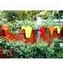 Chhajed Garden Balcony Railing Multicolor Plastic Planter - Set of 3