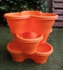 Chhajed Garden Orange Plastic Stacking Flower Pot - Set of 3