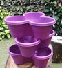 Chhajed Garden Violet Plastic Stacking Flower Pot - Set of 3
