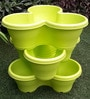 Chhajed Garden Lime Plastic Stacking Flower Pot - Set of 3