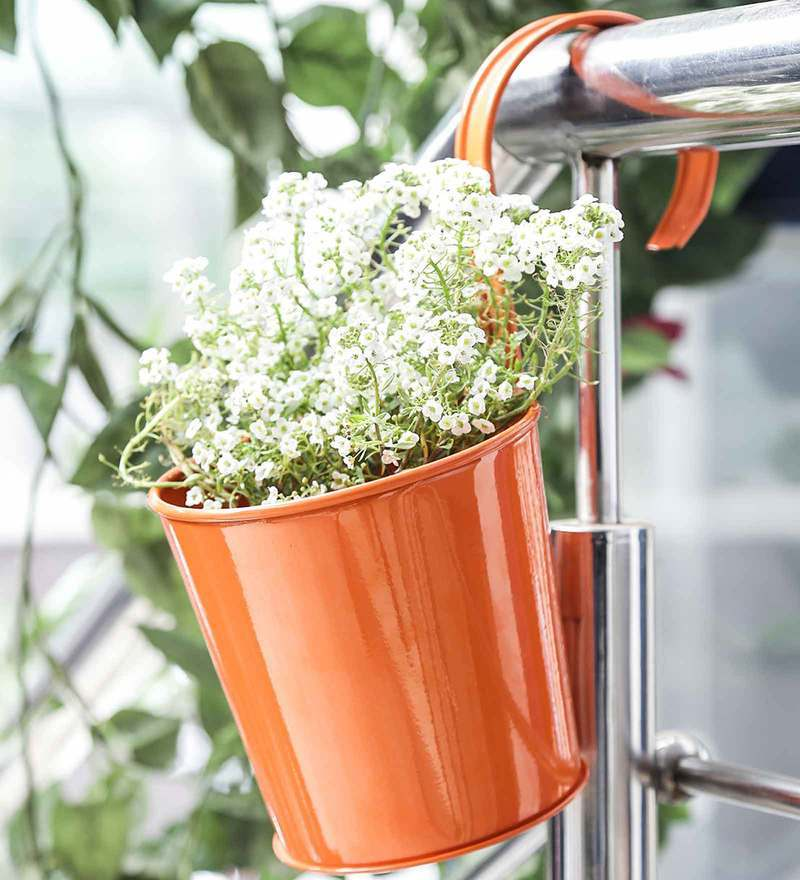 Bucket Planter with Handle in Orange by Color Palette