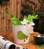 Color Palatte  - White Birdie Planter