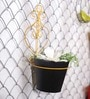 Black and Yellow Metal Wall Hanging Planter by Color Palette