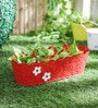 Red Floral Planter by Color Palette