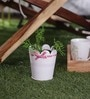 White and Pink Vintage Planter by Color Palette