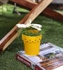 Yellow Star Design Planter - Small by Color Palette