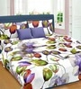 Premium Tulip & Lilie Purple 100% Cotton Queen Size Bed Sheet - Set of 3 by Cortina