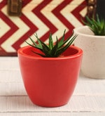 Red Ceramic Table Top Planter
