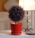 Red Ceramic Table Top Planter with Saucer