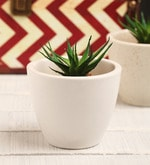 White Ceramic Table Top Planter
