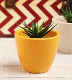 Yellow Ceramic Table Top Planter