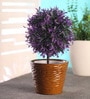 Brown Ceramic Table Top Planter by Decardo