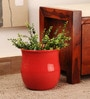 Red Ceramic Glazed Planter by Decardo