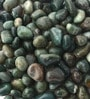 Green Stone Pebbles - 1 Kg by Decor Pebbles