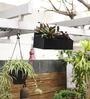 Black Metal 18 x 6 x 10 Inch Garden Flower Box by Designmint
