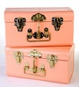 Deziworkz Metal Pink Small Fun Trunk