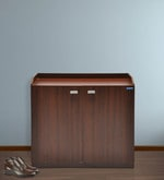 Double Door Shoe Cabinet in Brown Colour