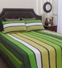 Green Cotton Queen Size Bed Sheet - Set of 3 by Dreamscape