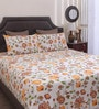 Dreamscape Yellow Cotton Queen Size Bed Sheet - Set of 3