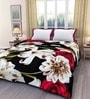 eCraftIndia Multicolor Poly Cotton Floral 84 x 54 Inch Single Bed Reversible AC Blanket