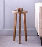 Elgin End Table in Rustic Finish